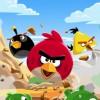 Angry Birds se dote de 15 nouveaux niveaux
